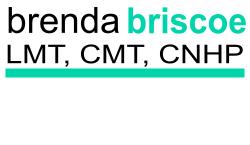 Brenda Briscoe New Logo A 500x290